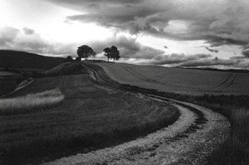 christian coigny paysage